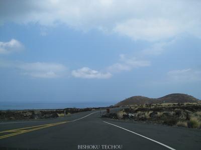 2013ハワイ島 195.jpg