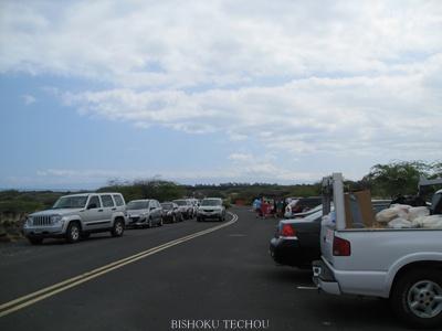 2013ハワイ島 212.jpg