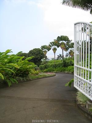 2013ハワイ島 214.jpg