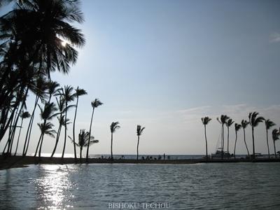 2013ハワイ島 255.jpg