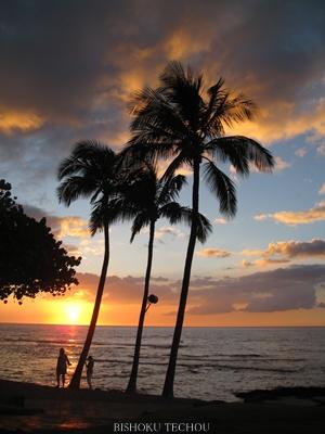2013ハワイ島 061.jpg