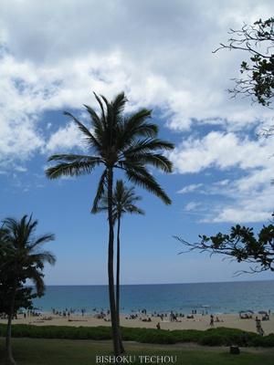2013ハワイ島 072.jpg