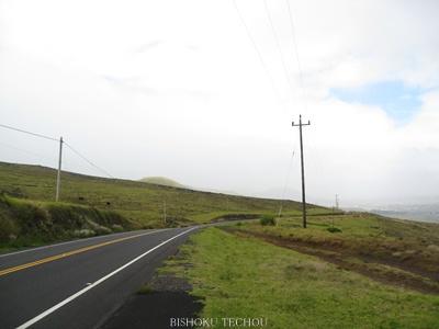 2013ハワイ島 083.jpg
