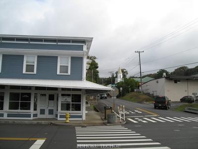 2013ハワイ島 097.jpg