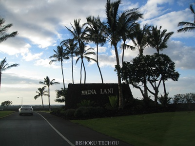 2013ハワイ島 180.jpg