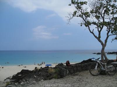 2013ハワイ島 202.jpg