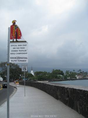 2013ハワイ島 248.jpg