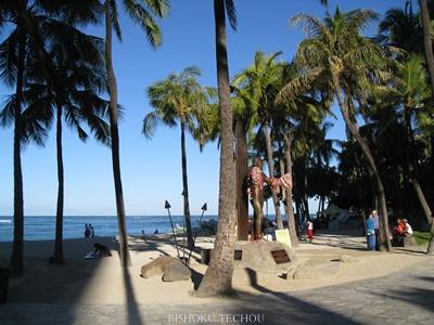 2013ハワイ島 332.jpg