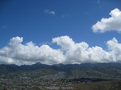 2013ハワイ島 351.jpg