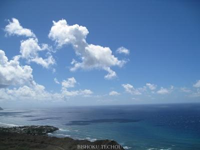 2013ハワイ島 352.jpg
